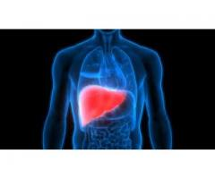 Sure Botanicals CBD Oil:Protect the liver and uneasy stomach